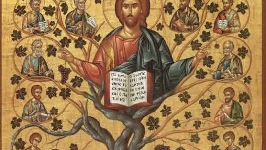 Lezingen bij de vijfde Paaszondag